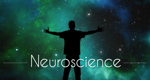 michel pascal tv home page neuroscience
