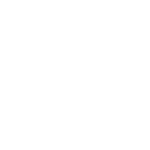 Michel Pascal Mind Dive App